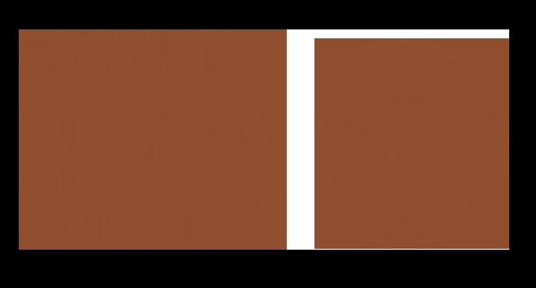 logo-cga-chalet-05-2